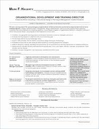 Technical Skills On A Resume Interesting Flight Attendant Resume Sample College Graduate Resume Example