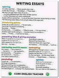 Reflective Essay Writing Examples Essay Essaywriting Example Of Persuade Speech Drought