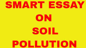 smart essay on soil pollution smart essay on soil pollution
