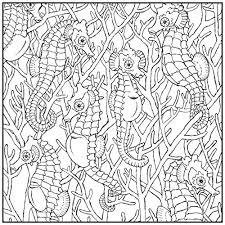 coloring book sea life stress relieving designs includes bonus relaxation cd color with