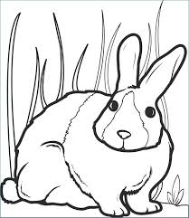 Easter Bunny Coloring Book Pages Free Printable Bunny Rabbit