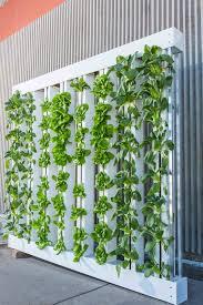 how to make a vertical garden. Wonderful Make How To Hang A Create Vertical Garden To How Make A Vertical Garden N