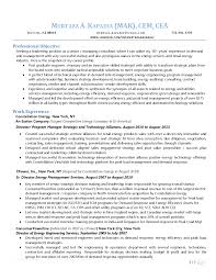 Classy Management Consultant Resume Summary For Senior It Sample