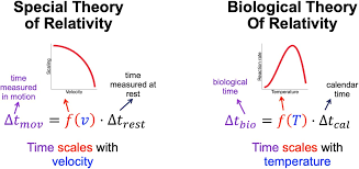 Biological Theory The Pace Of Life Time Temperature And A Biological Theory