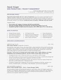Hairstyles Project Manager Resume Template Licious 200