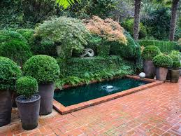 Small Picture The 25 best Japanese maple garden ideas on Pinterest Bloodgood