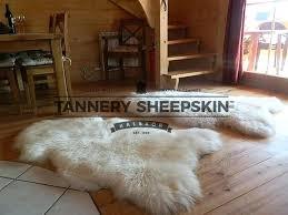 sheepskin rug tannery rugs big fur pink