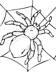 with insects coloring pages