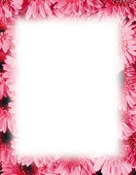 Flower Wall Paper Border Summer Horse Flowers Wallpaper Border Hd Walls Find Wallpapers
