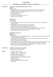 Promoter Resume Example Promoter Resume Samples Velvet Jobs 1