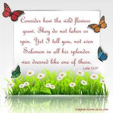 Spring Christian Quotes Best Of Scenery Spring Pictures Spring Quotes Christian