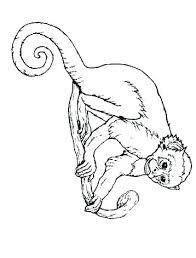 Five Little Monkeys Coloring Page Five Little Monkeys Coloring Page