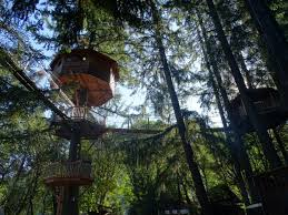 Tree house designs Bamboo Out About Treehouse Resort Designboom Tree House Design Engineering Precision Structural Engineering