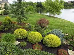 20 shrub garden designs ideas