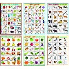 Educational Charts Manufacturers In India Educational Charts Manufacturers Suppliers Exporters In