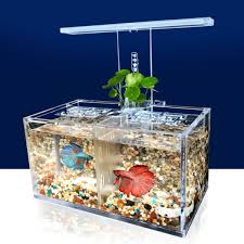 betta fish tanks. Wonderful Tanks 234GridAquariumLEDAcrylicBetta For Betta Fish Tanks I