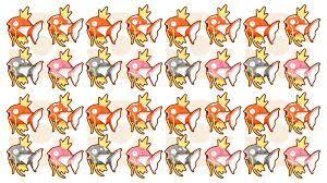 All Magikarp Patterns Stunning Magikarp Jump」 Wiki Pokémon Amino