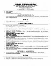 popular resume formats popular resume templates most professional resume template