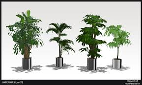 modern office plants. SET OF 4 INTERIOR - EXTERIOR PLANTS OFFICE Copy/Modify \u0026 Modify Modern Office Plants