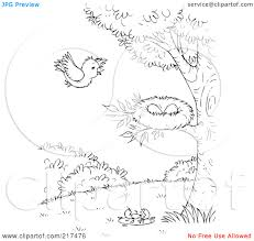Small Picture Bird Nest Coloring Pages