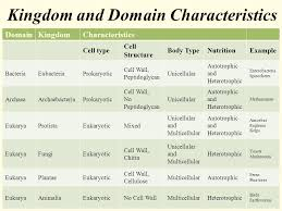 Kingdoms Of Biology Chart Domain And Kingdom Chart Bedowntowndaytona Com