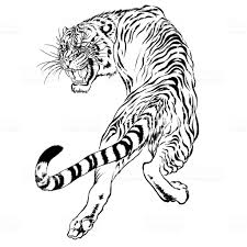 tiger black and white drawing. Perfect White Black And White Drawing Of A Japanese Tiger Royaltyfree Black  To Tiger And White Drawing