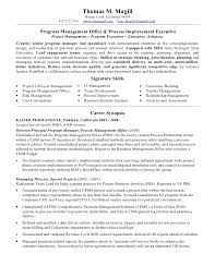 magill thomas resume pmo process 2010 .