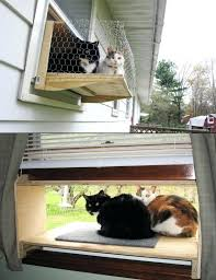 cat window perch outside cat window box outside view animal planet with cat window box cat cat window perch