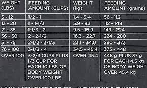 Purina Pro Plan Puppy Large Breed Feeding Chart Purina Pro Plan Puppy Savor Dog Food Naturals Focus Large