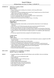 Clerk Typist Resume Samples Velvet Jobs