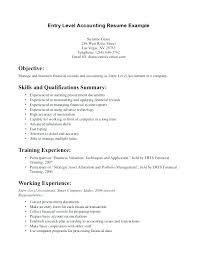 Entry Level Job Resume Examples Format For Job Resume Sample Pattern Of Orlandomoving Co