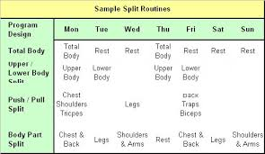 weight training planning planning your training frequency fitness workouts exercises