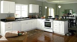 kitchen ideas white cabinets black appliances. Trendy Kitchen With White Cabinets Decor Cabinet Ideas Enchanting Decoration Designs Black Appliances C