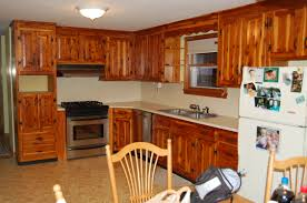 Kitchen Refinishing How To Refinish Kitchen Cabinets For Stylish Refinishing Kitchen