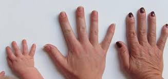 Image result for free pictures of old and young hands