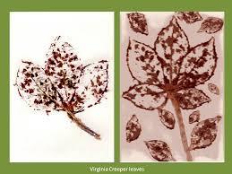 hammered botanical prints 14