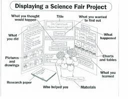 Science Fair Presentation Board Template Science Project Board