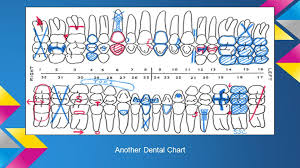 Dental Charting Key Charting Conditions Of The Teeth I Dental Charts Each