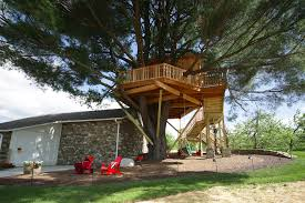 treehouse masters brewery. EditTouchShare Treehouse Masters Brewery O