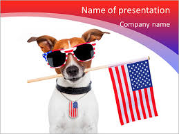 American Dog With Usa Flag Powerpoint Template Infographics Slides