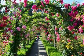 vancouver to victoria and butchart gardens tour by bus see the complete list s globalnews ca news 4299902 best travel experiences
