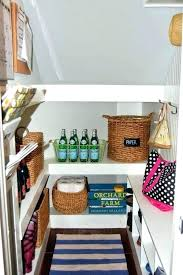 basement stairs storage. Under Stairs Closet Ideas Cupboard The Storage Stair Step  For Basement