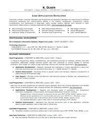 Sample Resume Computer Programmer Sample Resume For An Entry Level