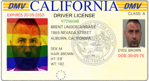 Sport Driver Licenses Rainbow California Overlay To
