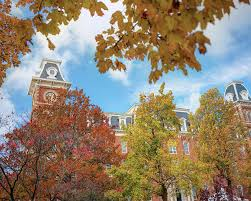 University of Arkansas Razorback Campus during Autumn Poster by Gregory  Ballos