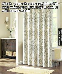 how to clean shower curtain mold how black mold removal cleaning tips home maintenance repairs clean