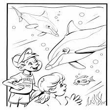 25 Bladeren Kleurplaten Dolfijnen Mandala Kleurplaat Voor Kinderen