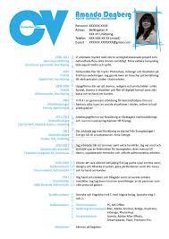 curriculum vitae artist resume curriculum vitae artist resume tk