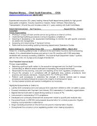 Internal Audit Manager Resume Examples Objectives Sample Of