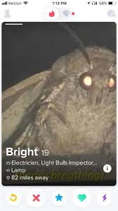 Moth Memes Are Leaking Tinder
